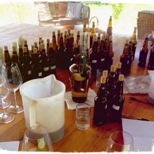 Assaggi di vino